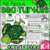 Life Cycle of a Sea Turtle Take Home Packet