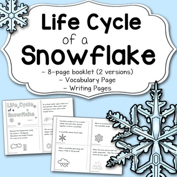 Snowflake Life Cycle Worksheets & Teaching Resources | TpT