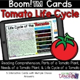 Life Cycle of a Tomato with Reading Comprehension {Boom Cards™}
