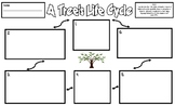 Life Cycle of a Tree Legal-Sized Illustration and Sentence Frames