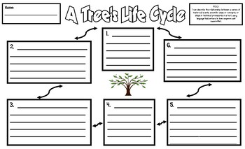 Life Cycle of a Tree Sentence Frames Legal-Sized