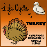 Life Cycle of a Turkey Digital Research Project
