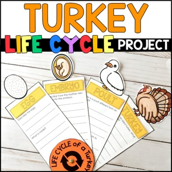 Life Cycle of a Turkey: Fact Fan