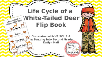 Life Cycle of a White-Tailed Deer Flip Book