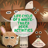 White-tailed Deer Life Cycle Activities