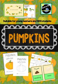 Life Cycle of a pumpkin activities