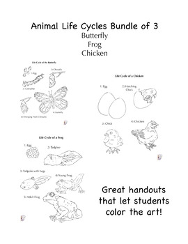 Life Cycle of an Animal Bundle of Three: Chicken, Butterfly and Frog