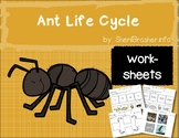 Life Cycle of an Ant | PreK-K Worksheets | English