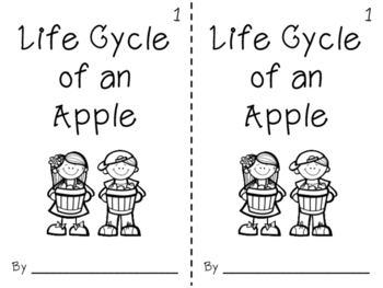 Life Cycle of an Apple Book