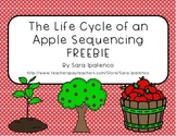 Life Cycle of an Apple Sequencing Freebie