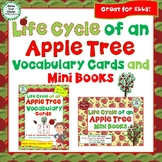 Life Cycle of an Apple Tree Vocabulary Cards and Mini Books BUNDLE