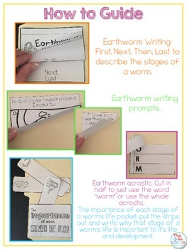 Life Cycle of an Earthworm Lapbook {with 11 foldables} Worm Life Cycle INB