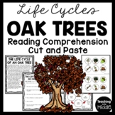 Life Cycle of an Oak Tree Reading Comprehension and Sequencing Worksheet