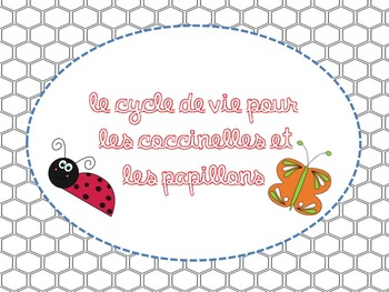 Life Cycle of insects - Grade 2 science in French
