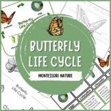 Life Cycle of the Butterfly | Nature Curriculum in Cards | Montessori
