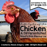 Life Cycle of the Chicken: A Differentiated Nonfiction Resource for 3rd Grade