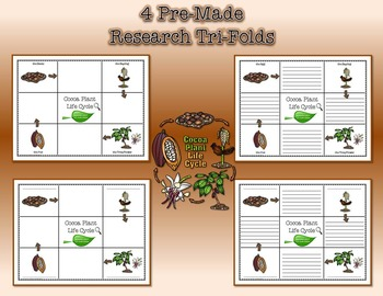 Life Cycle of the Cocoa Plant Research Tri-Folds and Graphic Organizers