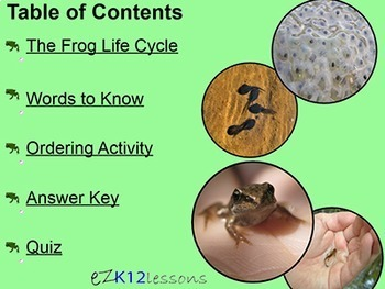 Life Cycle of the Frog Powerpoint