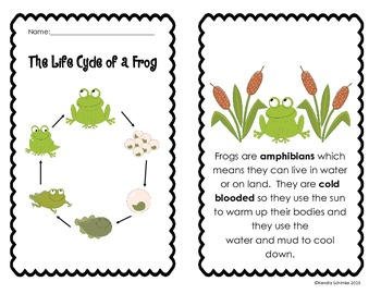 Life Cycle of the Frog :Informational Student Book and Quiz