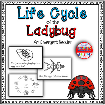 Life Cycle of the Ladybug: A Science Emergent Reader