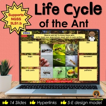 Life Cycle of the Ant Interactive Notebook for Google Slides® Distance Learning
