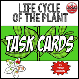 Life Cycle of the Plant Task Cards