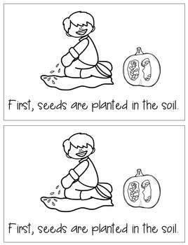 Life Cycle of the Pumpkin: A Science Emergent Reader