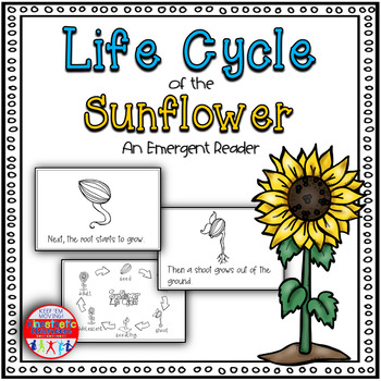 Life Cycle of the Sunflower: A Science Emergent Reader