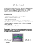 Life Cycle project Letter