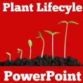 Plant Life Cycle PowerPoint | Plant Life Cycle Activity