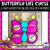 Butterfly Life Cycle:  Craft Activity