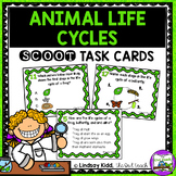 Life Cycles Unit:  Animal Life Cycle Task Cards