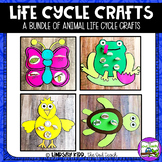 Life Cycles Unit - Animal Crafts BUNDLE