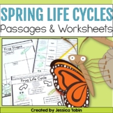 Life Cycles for Spring; Frog, Chicken, and Butterfly Life Cycles