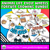 Distance Learning Science Animal Life Cycle Activities BUNDLE