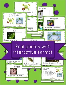 Butterfly and Frog Life Cycles Vocabulary Book and Song