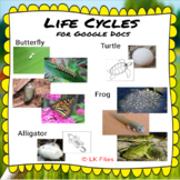 Life Cycles for Learning Centers:  Alligator, Butterfly, C