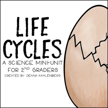 Life Cycles
