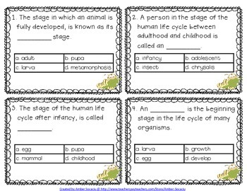 Life Cycles Academic Vocabulary Workbook, Task Cards and Assessments