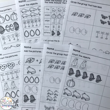 Life Cycles Activities for Special Education