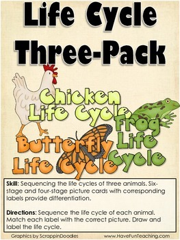 Life Cycles Activity (CHICKEN, FROG, BUTTERFLY)
