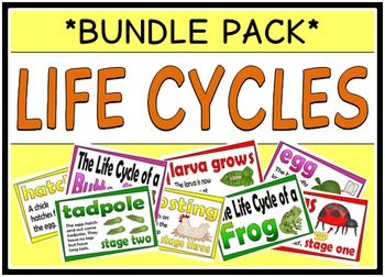 Life Cycles (BUNDLE PACK)
