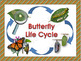Life Cycles BUTTERFLY LIFE CYCLE Unit with Craftivity
