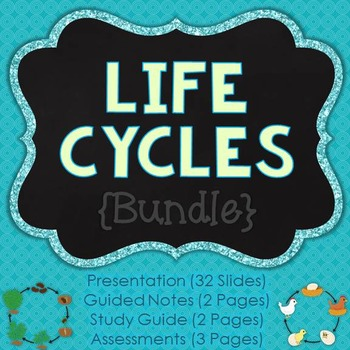 Life Cycles {Bundle}