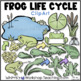 Life Cycles Bundle 2 (4 Sets) Whimsy Workshop Teaching