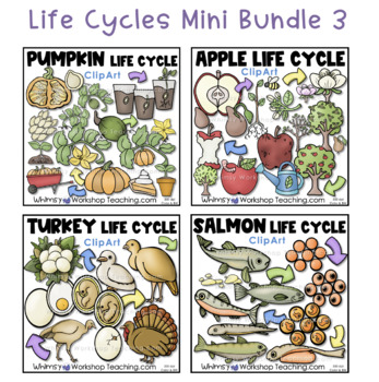 Life Cycles Bundle 3 (4 Sets) Whimsy Workshop Teaching