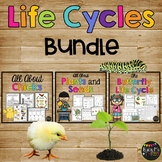 Life Cycles Bundle {Chicken, Butterfly, Plant}