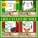 Life Cycles BUNDLE ~ Read it! Draw it! Write it!
