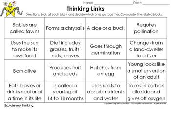 White-tailed Deer, Butterfly, and Plant Life Cycles Thinking Links - King Virtue