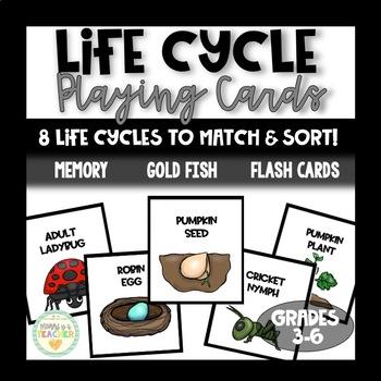Life Cycles Card Games